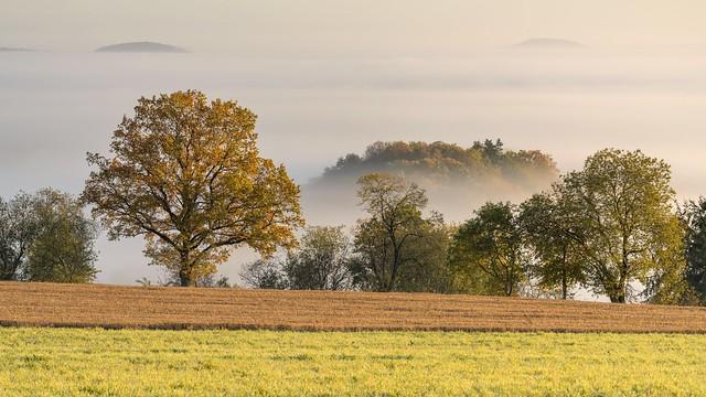 *Volcanic Eifel autumn II* - *Vulkaneifel-Herbst II*
