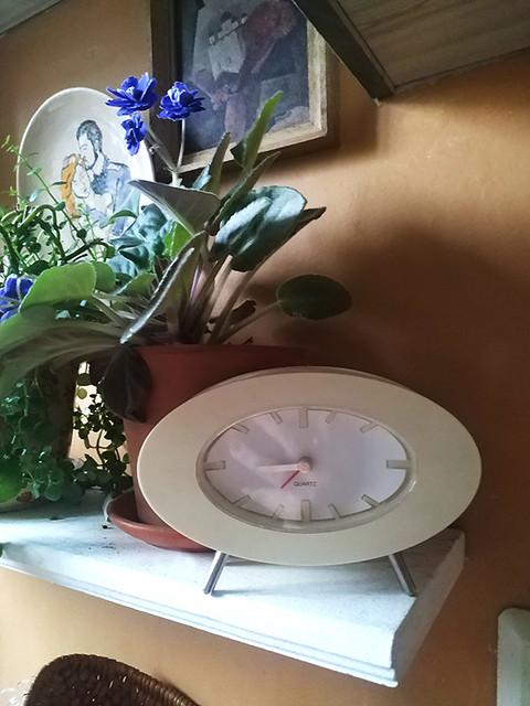 Воскресный день под лозунгом - отдохни, мать! домохозяйка,выходной,женщина,25-35,Санкт-Петербург,Россия