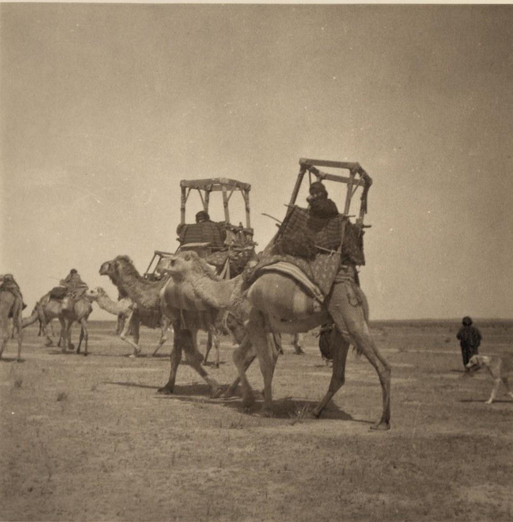 05. 27-30 апреля. 2 верблюда с бадажем