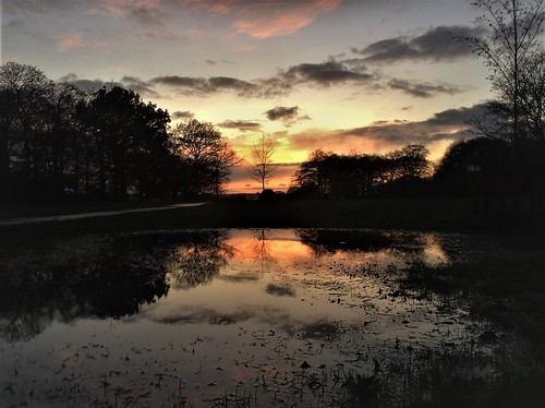 sunset vivid sky clouds trees silhouette reflections puddle beckett park headingly west yorkshire