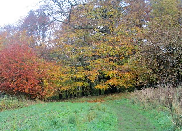 Balbirnie Park, Fife, Scotland