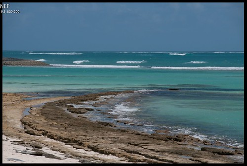 Screenshot of Raw image at a beach on Green Turtle Cay in the Bahamas