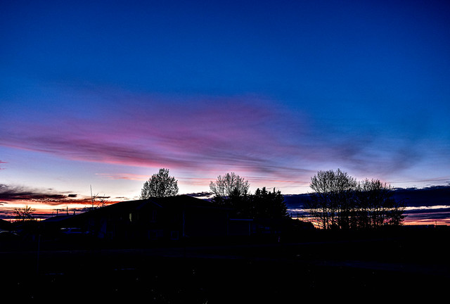 Bright silhouette sunset