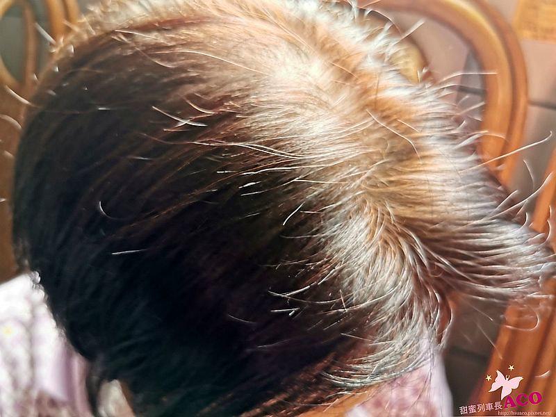 美髮:秋冬髮色【Fresh Light富麗絲彩染】公主風髮色10