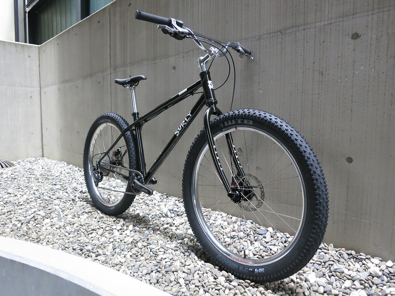 SURLY Lowside 1X10 Sil 2