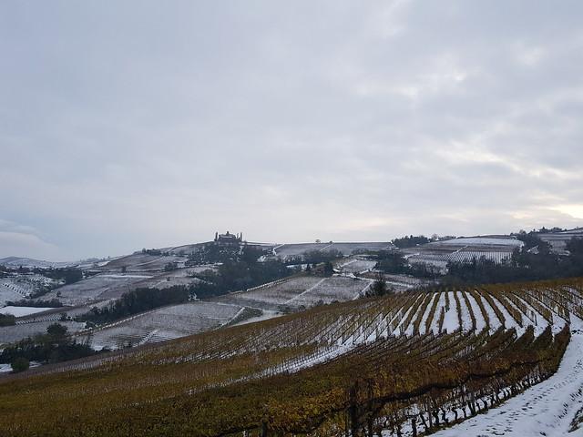 Piemonte / Piamonte