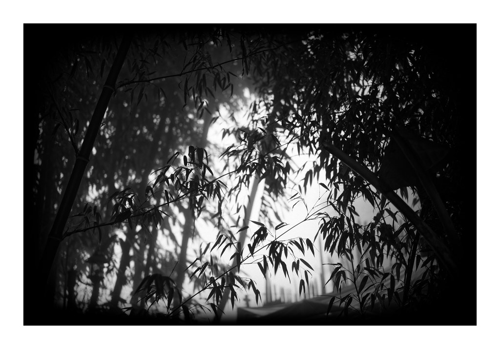 Yunnan nature
