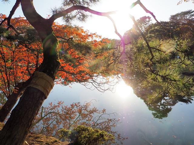 ②Rikugien Garden in autumn