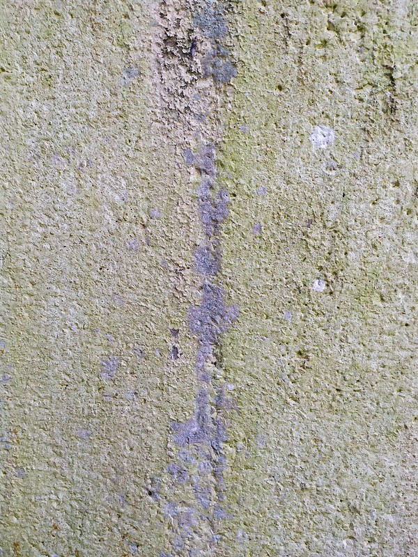 Concrete wall texture - by TexturePalace.com