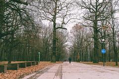 Park | Kaunas