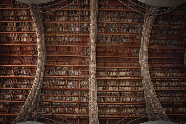 Biblioteca de teules