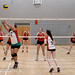 Volleyball-1469330.jpg