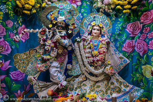 ISKCON Vrindavan Deity Darshan 17 Nov 2019