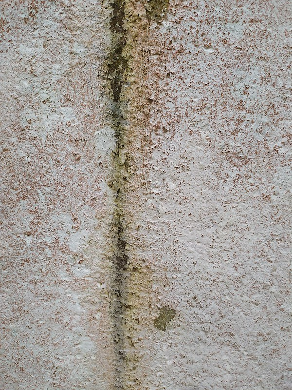 Dirty wall texture - by TexturePalace.com