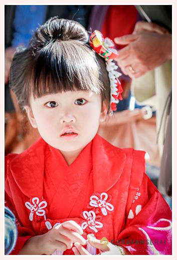 七五三 3歳の女の子 衣装は赤い着物・被布