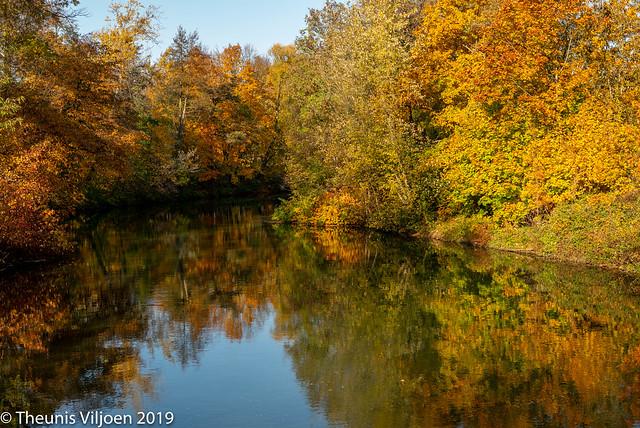 Autumn colours in Cottbus - V