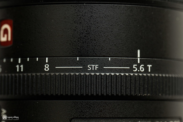 沈醉在如夢的時光中:Sony FE 100mm F2.8 STF GM OSS | 12