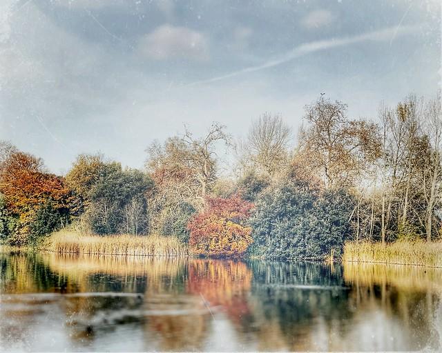 Battersea Park : a view