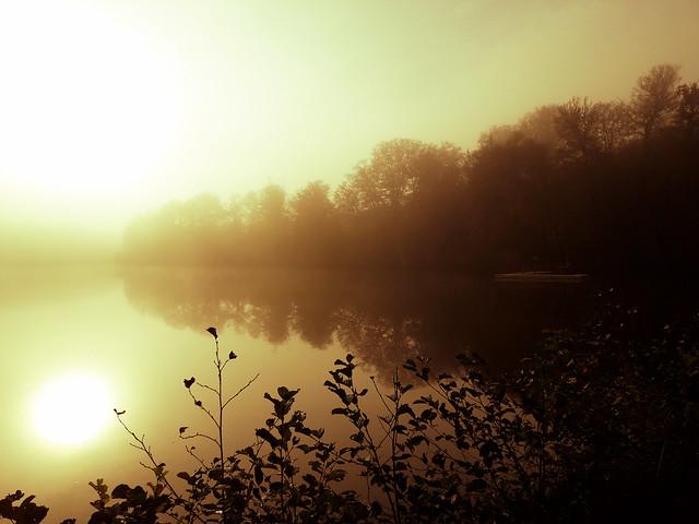 Brouillard orangé.