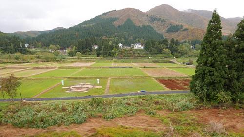 車窓から見える「ものずき村」の田んぼアート