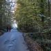 2019 - Bois-de-Lessines - 48ème randonnée « Points Verts »