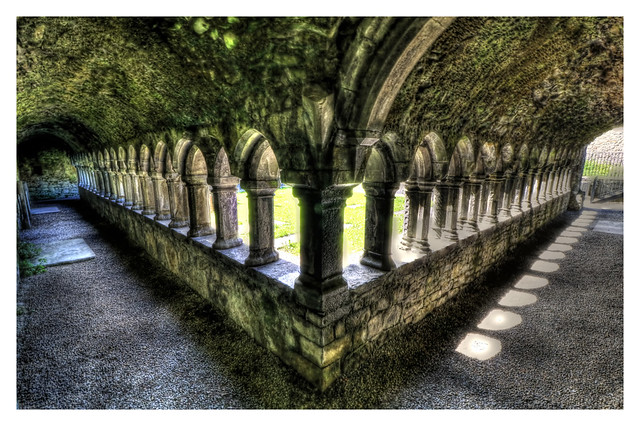 Sligo IR - Sligo Abbey 12