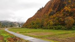 只見線の車窓から見える鷹待城跡 この山の向こう側が鏡ヶ池