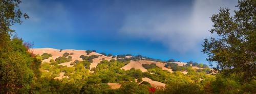 marincounty steve landscape hills panorama fog olympus omd