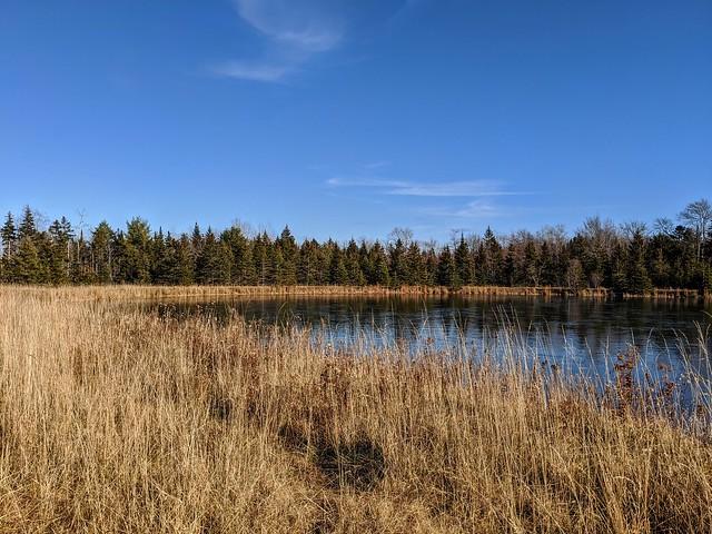 A Beautiful November Afternoon