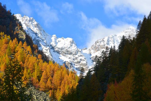 Parc des Ecrins Hautes Alpes _2256
