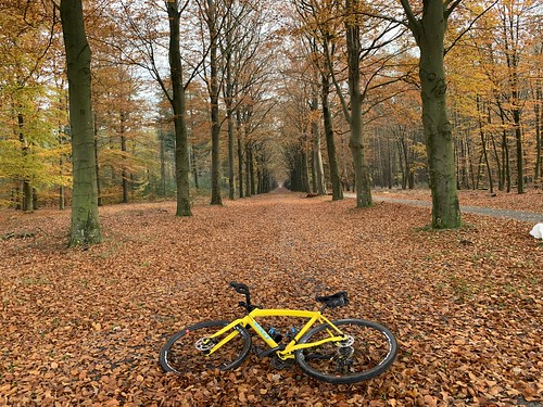 November Gravel ride, 80km | by Klaas / KJGuch.com
