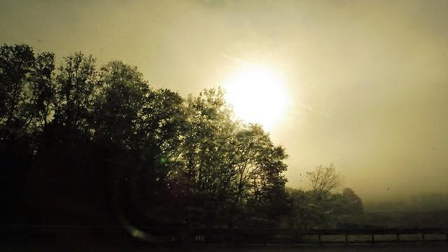 3 - Bourgogne, Autumn Light