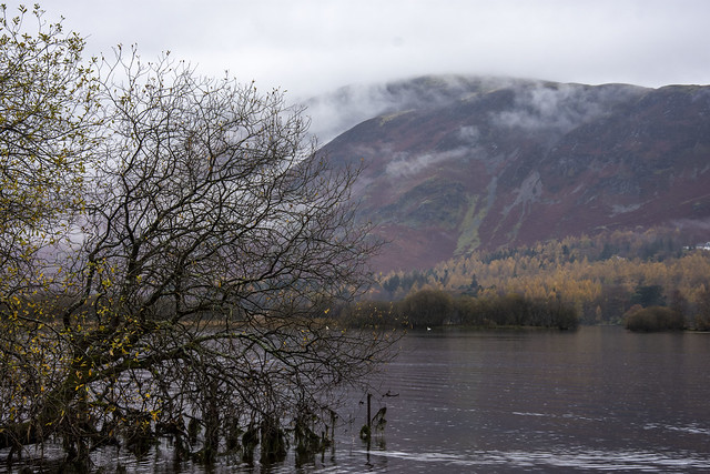Lake Derwent, Lake District