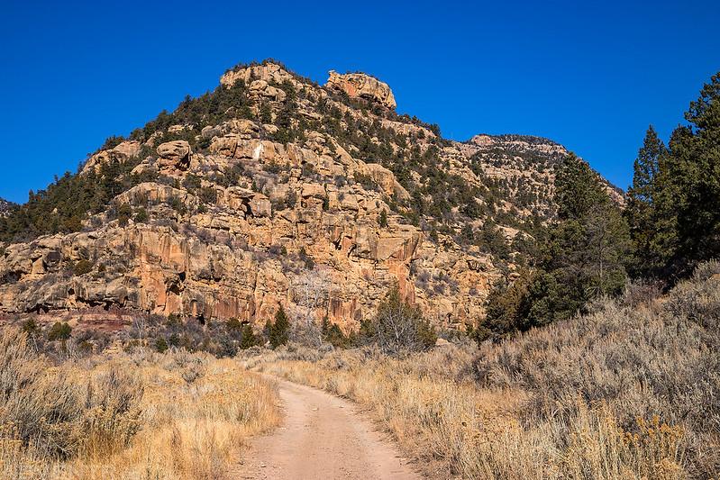 Barton Canyon