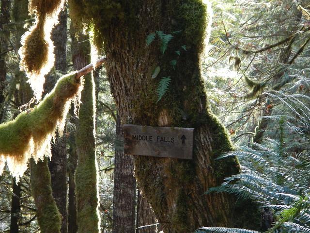 2019-11-11 Birthday hike 024