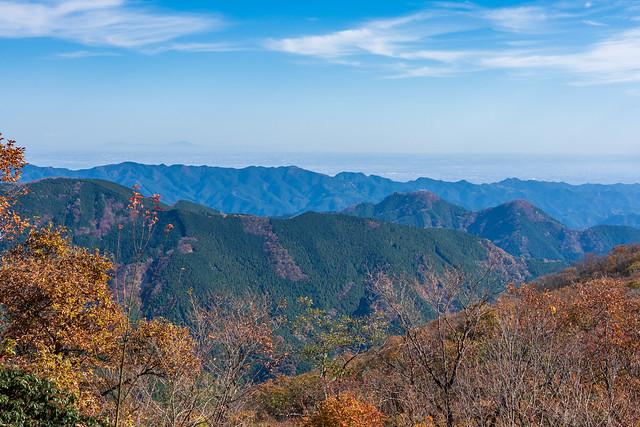 今日は伊豆ヶ岳まで行くよ