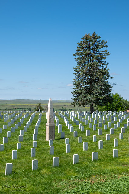 One monument, one tree and 5,000 silent remains