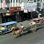 00725 (1004) 07-02-1986 Bullock and cart with Bamboo and Jeepneys A B Fernandez Avenue, Dagupan, Pangasinan, Philippines.