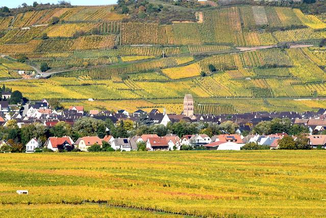 Sigolsheim (Alsace, F)