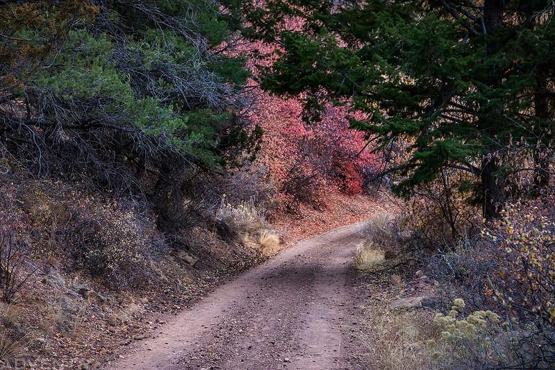 Range Creek Road