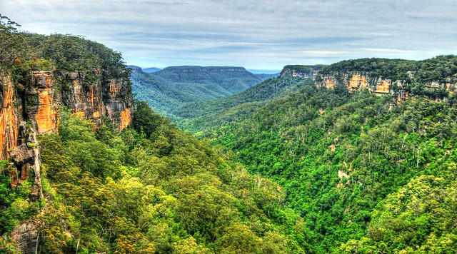 View from Fitzroy Falls I