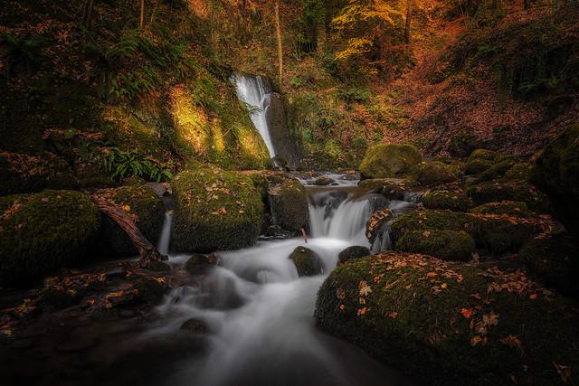 Autumn light, Alva Glen