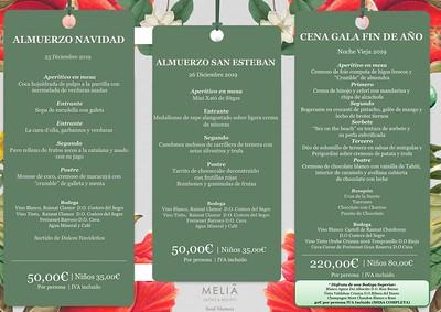 Navidad, San Esteban, Fin de Año en Meliá