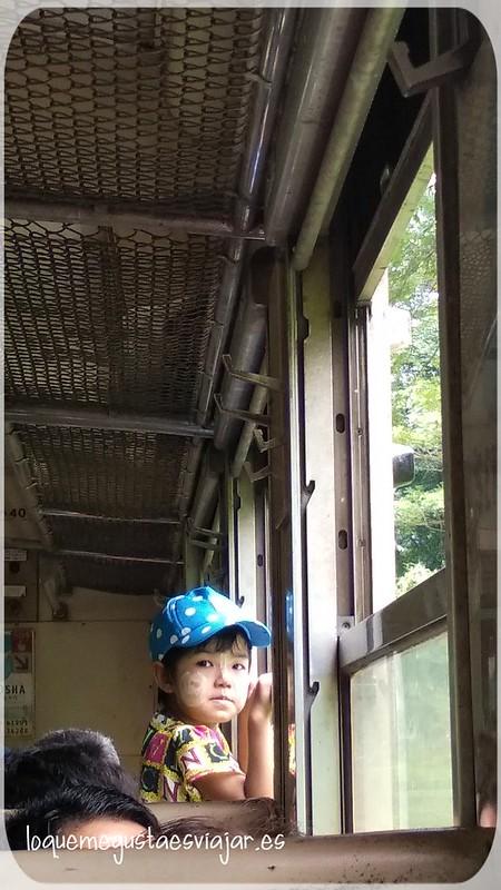Screenshot_2019-09-01-14-22-35-314_com.miui.gallery