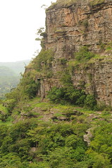 Guinea 23-002 Sandstone cliffs at Mt. Gangan, Credit - RBG Kew (FF)
