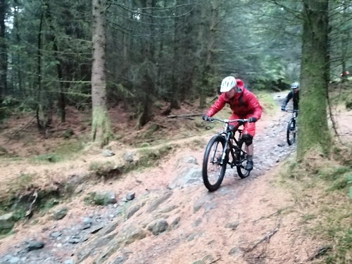 Cotic CC Grizedale
