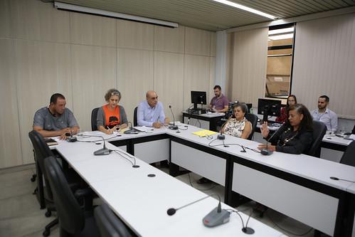 28ª Reunião Ordinária - Comissão de Mulheres