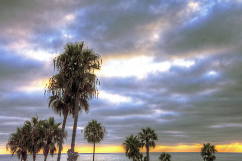 california united states nature beauty usa tropical paradise sunrise palm trees outdoor landscape seascape walkabout sunset photography travel beach sand sun pier strand canon40506070d walknshoot
