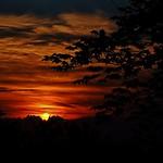 28. Juuli 2018 - 9:01 - July Sunset.