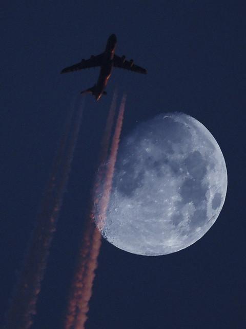18-Ilumina mi vuelo-Flipy Nubenegra
